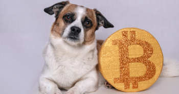 "Anomali Threat Research Warns Consumers: Don't Use Bitcoin to Buy ""Hatched"" German Shepherds This Holiday Season"